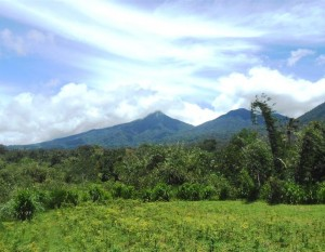Jual tanah di Tabanan 1.500 m2 di Tabanan