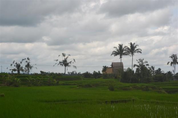 Tanah Tabanan dijual