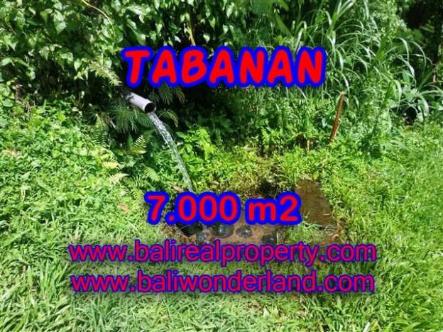 DIJUAL TANAH MURAH DI TABANAN TJTB089 - KESEMPATAN INVESTASI PROPERTY DI BALI