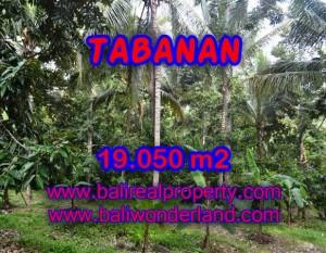 TANAH MURAH DIJUAL DI TABANAN BALI TJTB092 – PELUANG INVESTASI PROPERTY DI BALI