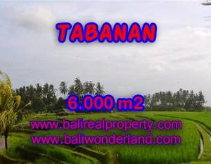 INVESTASI PROPERTI DI BALI – JUAL MURAH TANAH DI TABANAN BALI TJTB093