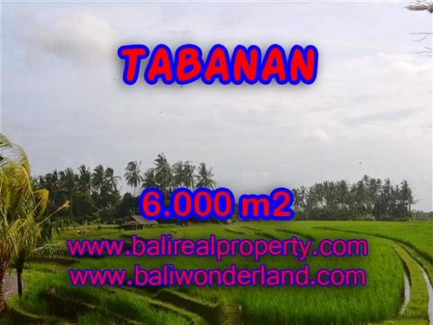 INVESTASI PROPERTI DI BALI - JUAL MURAH TANAH DI TABANAN BALI TJTB093