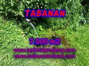 JUAL MURAH TANAH DI TABANAN BALI TJTB089