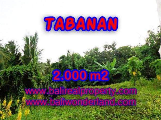 TANAH DIJUAL DI TABANAN MURAH RP 1.200.000 / M2 - TJTB099