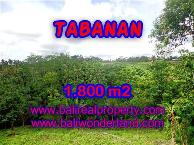 Peluang Investasi Properti di Bali - Jual Tanah murah di TABANAN TJTB088