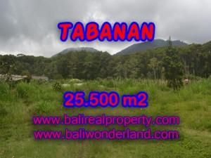 TANAH DI TABANAN BALI DIJUAL TJTB085 – PELUANG INVESTASI PROPERTY DI BALI