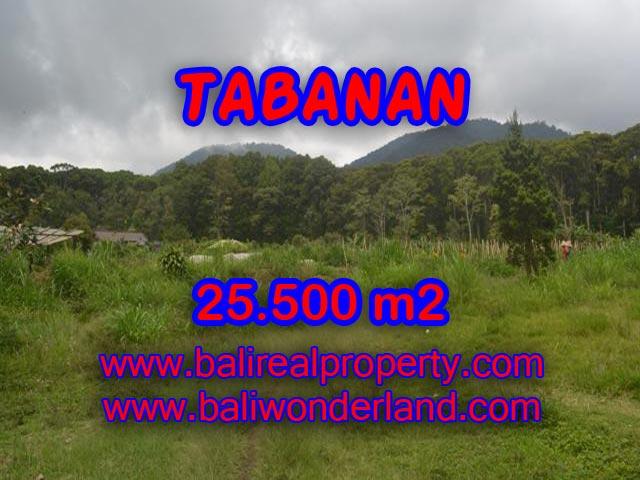 TANAH DI TABANAN BALI DIJUAL TJTB085 - PELUANG INVESTASI PROPERTY DI BALI
