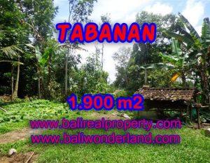 TANAH DI TABANAN BALI DIJUAL TJTB091 – PELUANG INVESTASI PROPERTY DI BALI