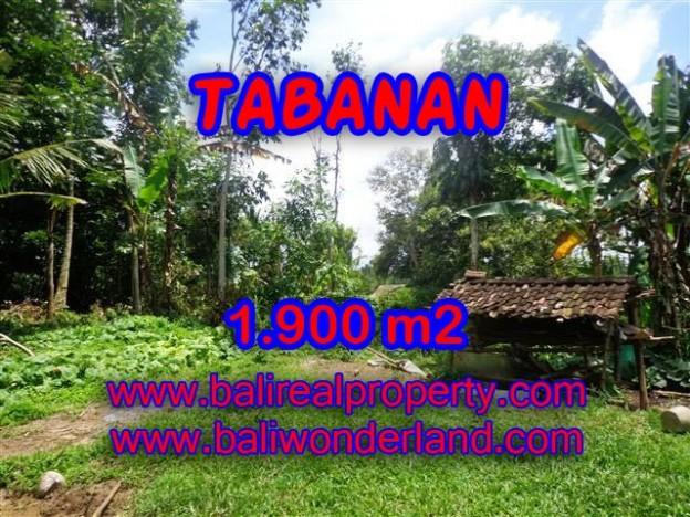 TANAH DI TABANAN BALI DIJUAL TJTB091 - PELUANG INVESTASI PROPERTY DI BALI
