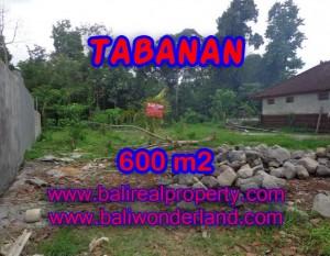 DIJUAL TANAH DI TABANAN RP 1.850.000 / M2 – TJTB087 – INVESTASI PROPERTY DI BALI