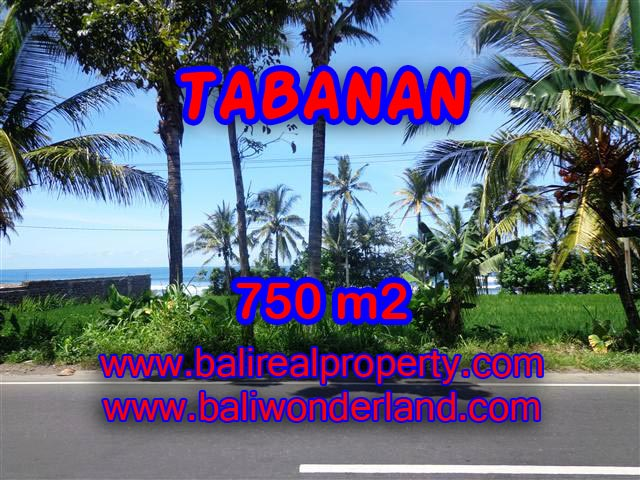 INVESTASI PROPERTI DI BALI - TANAH DI TABANAN BALI DIJUAL CUMA RP 1.550.000 / M2