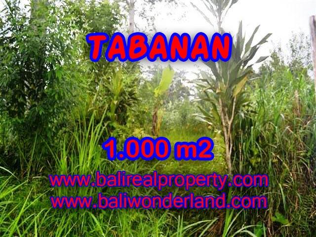 TANAH DIJUAL DI BALI, MURAH DI TABANAN HANYA RP 1.750.000 / M2