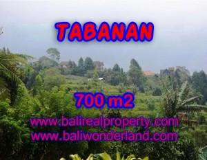 JUAL MURAH TANAH DI TABANAN BALI TJTB103 – PELUANG INVESTASI PROPERTY DI BALI