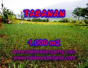TANAH DI TABANAN MURAH DIJUAL TJTB101 – INVESTASI PROPERTY DI BALI