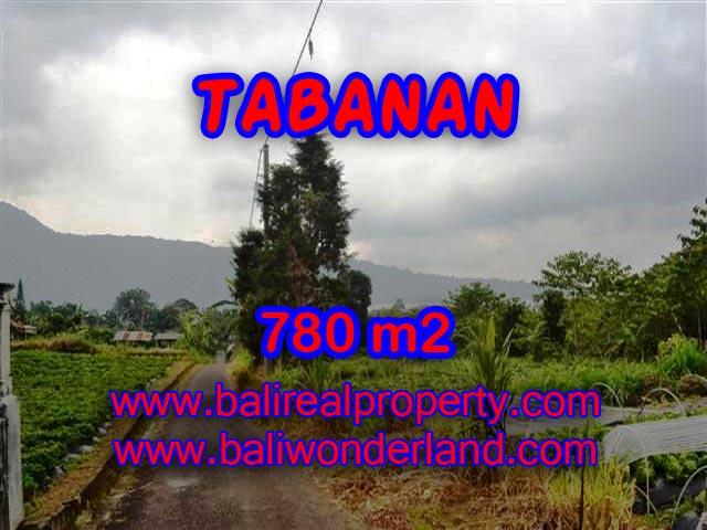 INVESTASI PROPERTI DI BALI - TANAH MURAH DIJUAL DI TABANAN BALI TJTB100