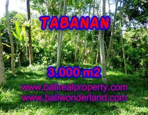 JUAL MURAH TANAH DI TABANAN BALI TJTB109 – PELUANG INVESTASI PROPERTY DI BALI