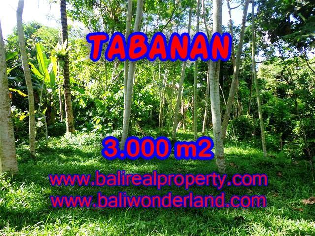 JUAL MURAH TANAH DI TABANAN BALI TJTB109 - PELUANG INVESTASI PROPERTY DI BALI