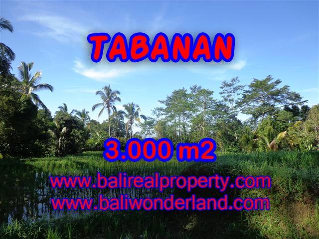 TANAH MURAH DIJUAL DI TABANAN BALI TJTB110 - PELUANG INVESTASI PROPERTY DI BALI