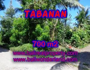 TANAH DI TABANAN MURAH DIJUAL TJTB107 – INVESTASI PROPERTY DI BALI