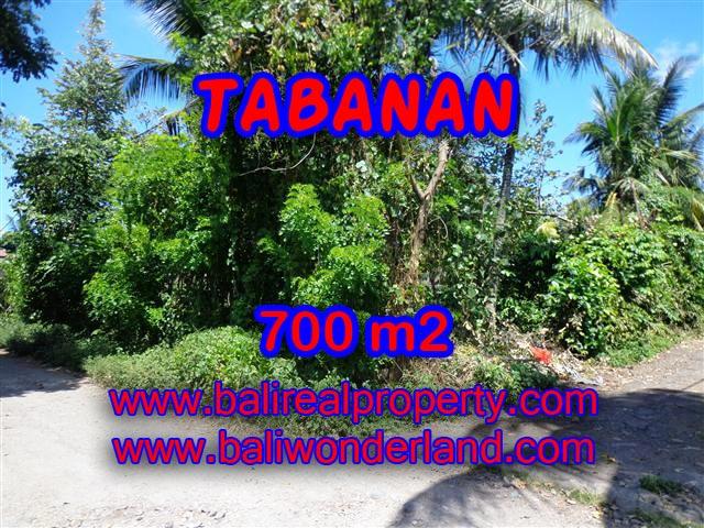 DIJUAL MURAH TANAH DI TABANAN TJTB107 - INVESTASI PROPERTY DI BALI