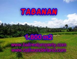 INVESTASI PROPERTI DI BALI – DIJUAL TANAH DI TABANAN BALI CUMA RP 750.000 / M2