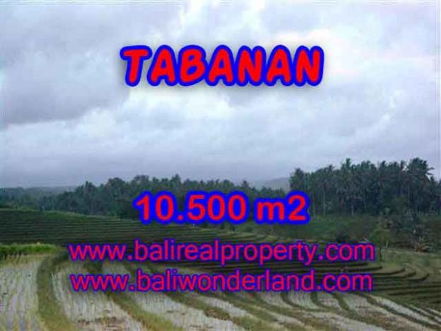 TANAH DI BALI, MURAH DIJUAL DI TABANAN TJTB095
