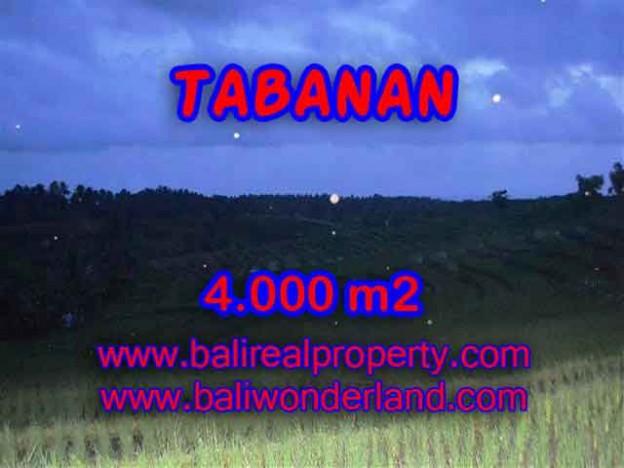 DIJUAL TANAH DI TABANAN BALI CUMA RP 360.000 / M2