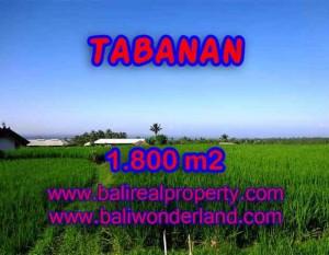 TANAH DI BALI DIJUAL MURAH DI TABANAN CUMA RP 550.000 / M2 – INVESTASI PROPERTY DI BALI