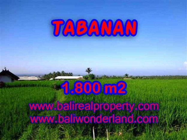 TANAH DI BALI DIJUAL MURAH DI TABANAN CUMA RP 550.000 / M2 - INVESTASI PROPERTY DI BALI