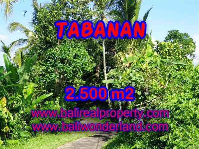 Investasi Properti di Bali - Murah ! Tanah di TABANAN Bali Dijual TJTB122