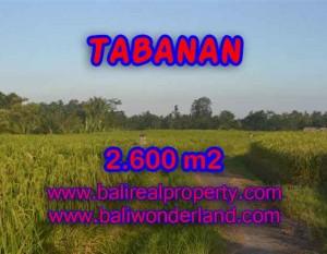 TANAH DIJUAL DI TABANAN BALI MURAH TJTB129 – PELUANG INVESTASI PROPERTY DI BALI