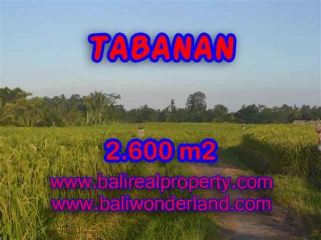 TANAH DIJUAL DI TABANAN BALI MURAH TJTB129 - PELUANG INVESTASI PROPERTY DI BALI