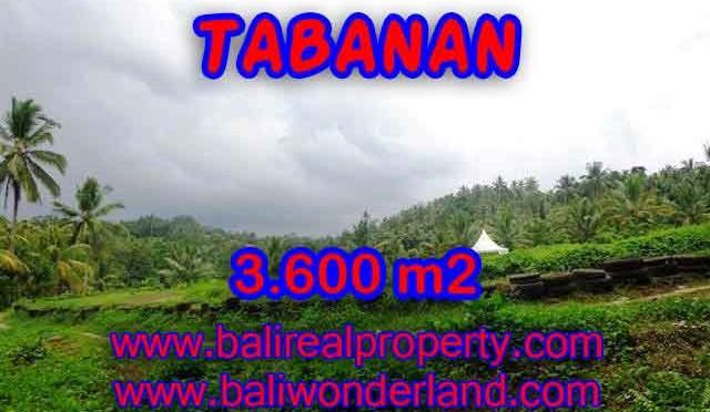 DIJUAL TANAH MURAH DI TABANAN TJTB117 - KESEMPATAN INVESTASI PROPERTY DI BALI