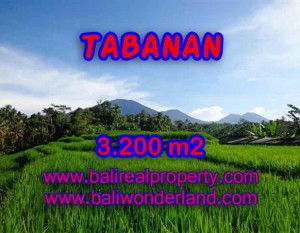 Murah ! Tanah di TABANAN Bali Dijual TJTB118 – investasi property di Bali
