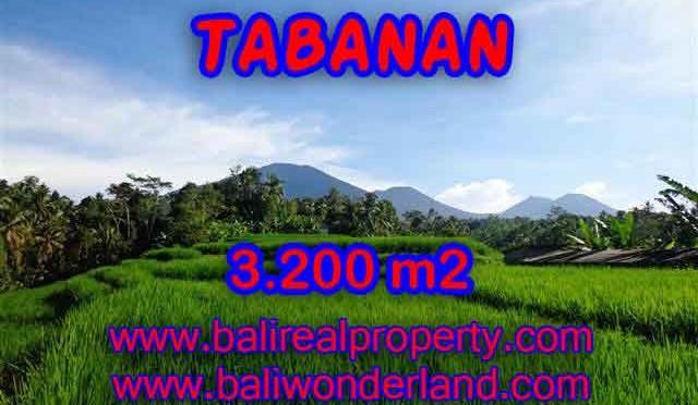 Murah ! Tanah di TABANAN Bali Dijual TJTB118 - investasi property di Bali
