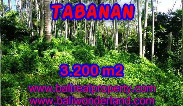 TANAH DIJUAL DI TABANAN CUMA RP 450.000 / M2