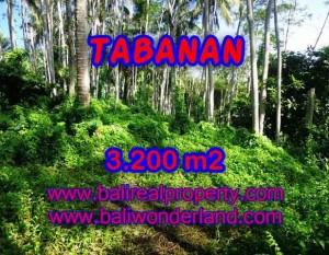 MURAH ! TANAH DIJUAL DI TABANAN BALI TJTB120 – INVESTASI PROPERTY DI BALI
