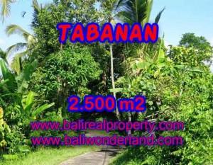 INVESTASI PROPERTI DI BALI – DIJUAL MURAH TANAH DI TABANAN BALI TJTB122
