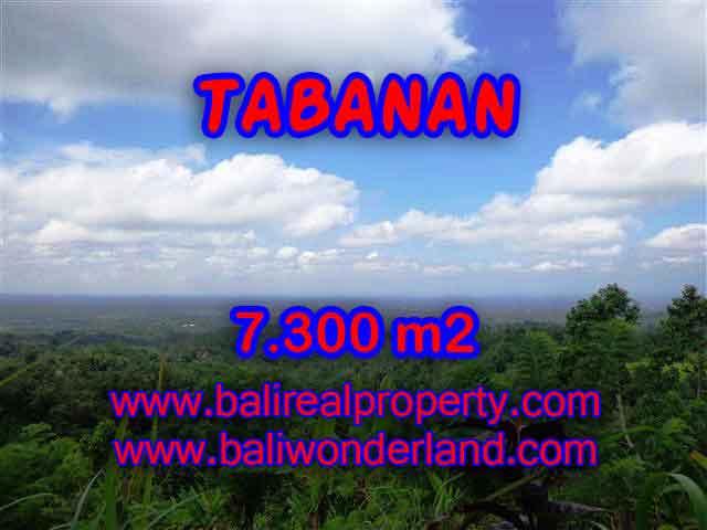 INVESTASI PROPERTI DI BALI - JUAL TANAH DI TABANAN CUMA RP 550.000 / M2