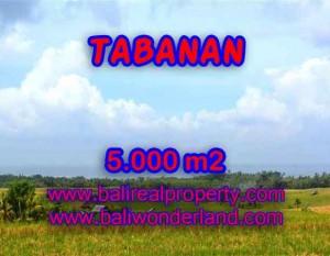 INVESTASI PROPERTI DI BALI – TANAH DIJUAL DI TABANAN CUMA RP 850.000 / M2