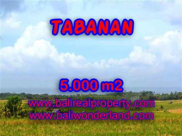 INVESTASI PROPERTI DI BALI - TANAH DIJUAL DI TABANAN CUMA RP 850.000 / M2