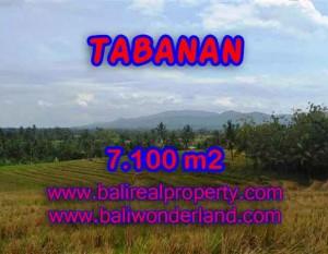 INVESTASI PROPERTI DI BALI – TANAH MURAH DI TABANAN DIJUAL CUMA RP 850.000 / M2