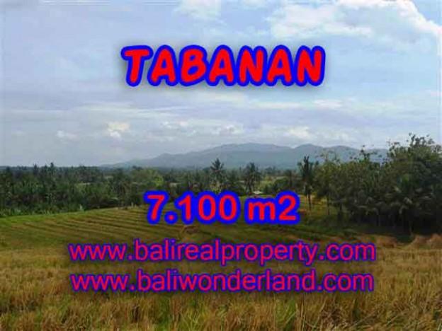 INVESTASI PROPERTI DI BALI - TANAH MURAH DI TABANAN DIJUAL CUMA RP 850.000 / M2