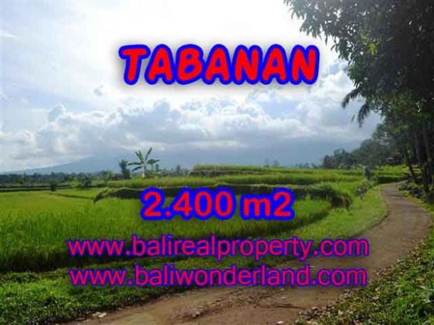 MURAH ! TANAH DIJUAL DI TABANAN BALI TJTB126 - INVESTASI PROPERTY DI BALI