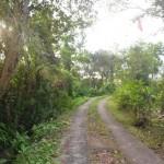 Jual Tanah Murah di Tabanan Bali TJTB1430112