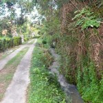 Jual Tanah Murah di Tabanan Bali TJTB1430113
