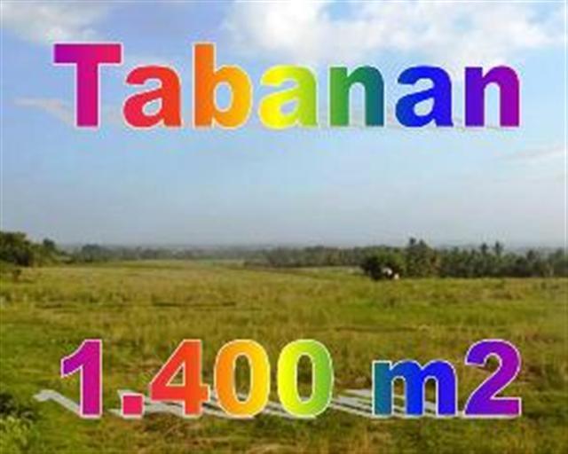Jual Tanah Murah di Tabanan Bali TJTB1430115