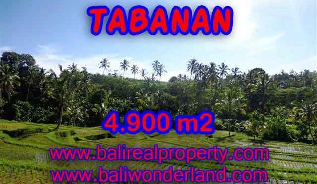 INVESTASI PROPERTI DI BALI - TANAH DI TABANAN BALI DIJUAL CUMA RP 420.000 / M2