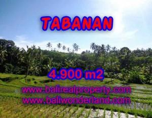 TANAH DI TABANAN MURAH DIJUAL TJTB111 – KESEMPATAN INVESTASI PROPERTY DI BALI
