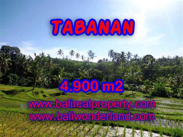 TANAH DI TABANAN MURAH DIJUAL TJTB111 - KESEMPATAN INVESTASI PROPERTY DI BALI